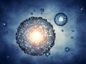אבחון גנטי לפני החזרת העובר לרחם: PGS ו-PGD