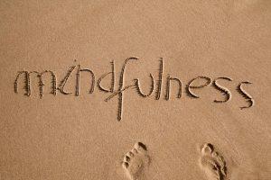 מיינדפולנס לחוסר פוריות, טיפולי הפריה חוץ גופית והפלות
