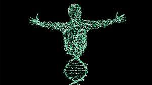 אפיגנטיקה - האם לאם הפונדקאית יש השפעה גנטית על העובר